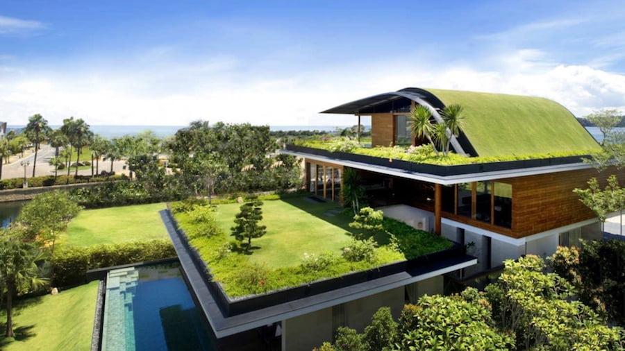 steel frame telhado verde